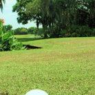 GolfFairways9